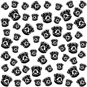 Rottweiler print black white fabrics