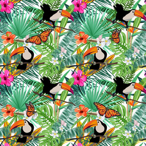 Toucans in the Spring