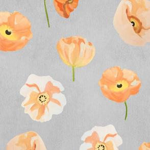 Peach Poppies on Grey Wallpaper