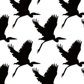 Take flight in black on white