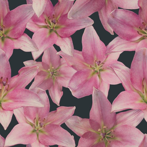 Moody Lilies
