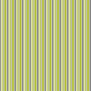 Sleeping Owl Thin Green Stripes