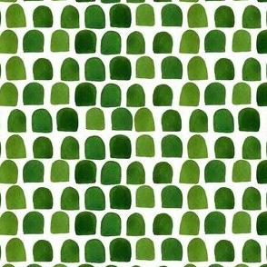 "4"" Green Scallops"