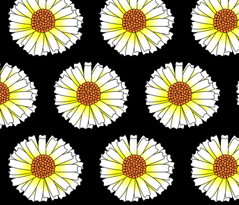 Daisy on Black fabric by spunky_eclectic on Spoonflower - custom fabric