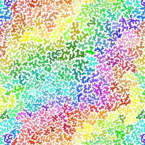coral rainbow light
