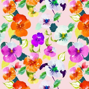 Rainbow Pansies // Peep Pink