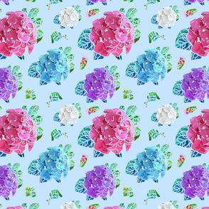 Hydrangeas in Blue (smaller)