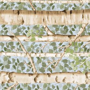 Summer Birches Railroaded