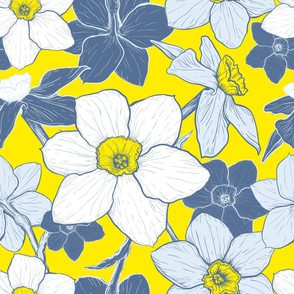 Pattern with flowers of Narcissus