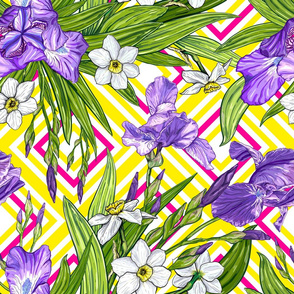Pattern with Iris and Narcissus flowers