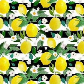 """4"""" Lemons Black and White Stripes"""