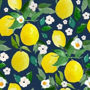 """8"""" Lemons Dark Blue Back"""
