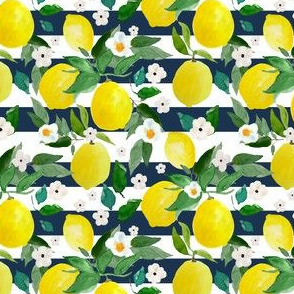 "4"" Lemons Dark Blue Stripes"