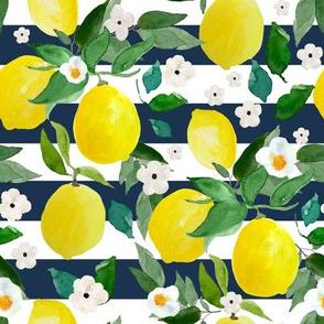 "8"" Lemons Dark Blue Stripes"
