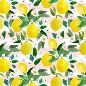 "4"" Lemons Pink Stripes"