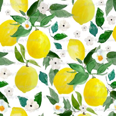 """4"""" Lemons White"""