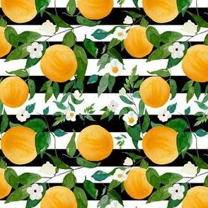 "4"" Oranges Black and White Stripes"