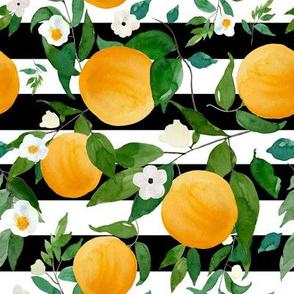 "8"" Oranges Black and White Stripes"