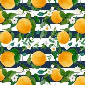 """4"""" Oranges Dark Blue Stripes"""