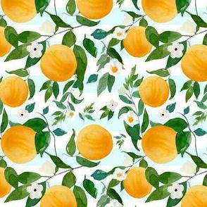 "4"" Oranges Light Blue Stripes"