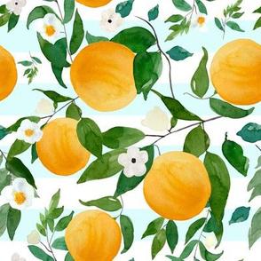 "8"" Oranges Light Blue Stripes"
