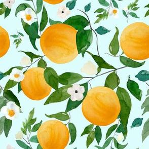 "8"" Oranges Light Blue"