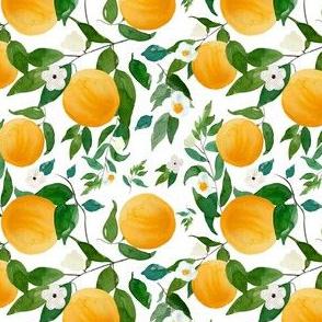 """4"""" Oranges White"""