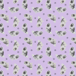 Tiny Keeshond - purple