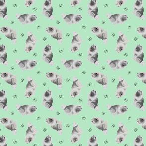 Tiny Keeshond - green