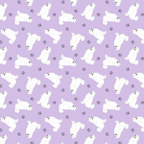 Tiny Samoyed - purple