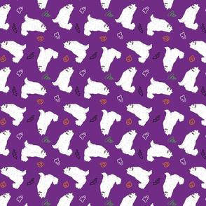 Tiny Samoyed - Halloween