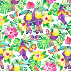 Tropical Toucans in Watercolour