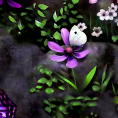 floral & butterfly design