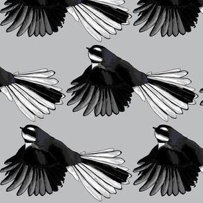 Fantail Monotone