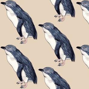 Little Blue Penguin Sandy Beach