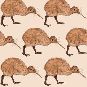 Kiwi on Stone