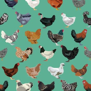 chicken breeds fabric - chicken fabric, farm fabric, farmhouse fabric, bird, birds fabric, - green