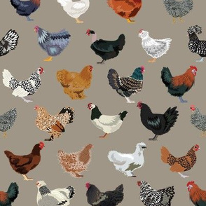 chicken breeds fabric - chicken fabric, farm fabric, farmhouse fabric, bird, birds fabric, -brown