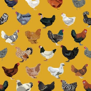chicken breeds fabric - chicken fabric, farm fabric, farmhouse fabric, bird, birds fabric, - yellow