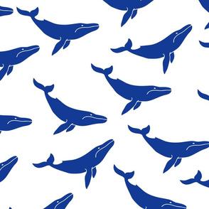 EP0006-cute-whales-1