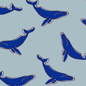 EP0006-cute-whales-3