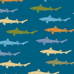 shark-shark-shark-1