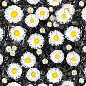 Countryside   / Floral   B&W w/ Yellow