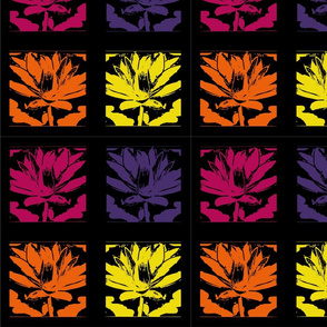 water lily block