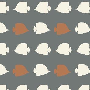 Fish White.Orange stock