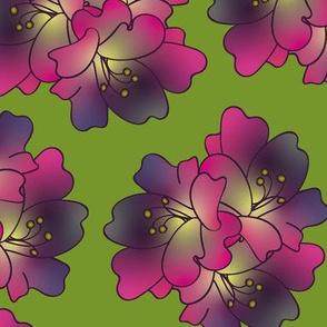 lillies gradient