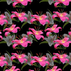 Waltz of Lilies - black