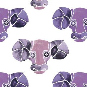 Purple Aries