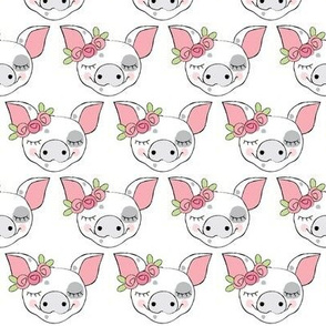 spotted pig faces with roses on white
