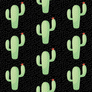 cactus noir fin-01